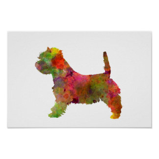 west highland white to terrier in watercolor 2 poster