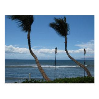 West Maui Palms Postcard