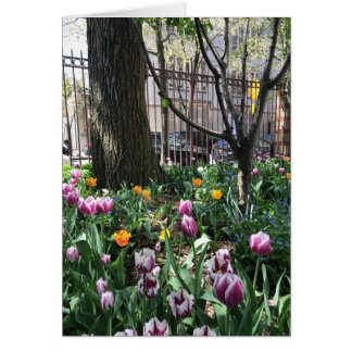 West Side Community Garden Tulip Festival NYC Card