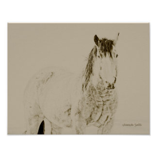 western art horse print, retro, vintage 11x14 gift poster