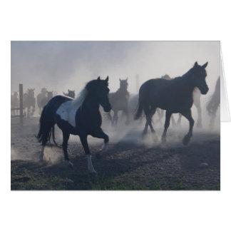 Western Cowboy Horses Card