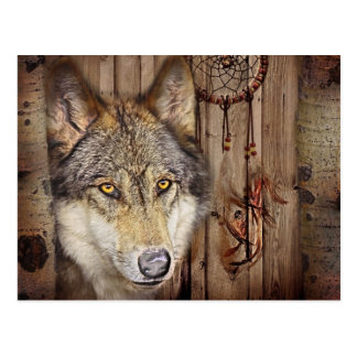 Western dream catcher  native american indian wolf postcard