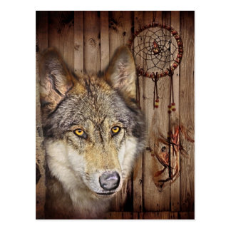 Western dream catcher  native american indian wolf postcard