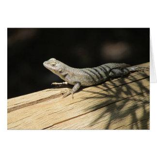 Western Fence Lizard Blank Card