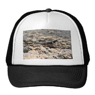 Western Fence Lizard Trucker Hat