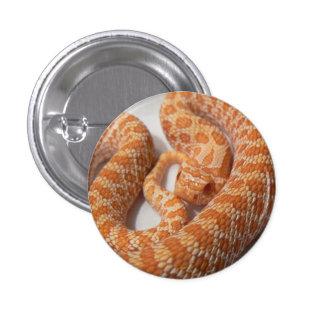 Western Hognose Badge 1 Inch Round Button