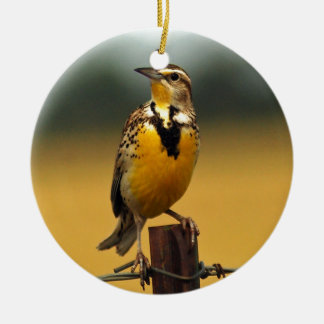 Western Meadowlark Ceramic Ornament