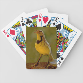 Western Meadowlark (Kansas, Montana, Nebraska) Bicycle Playing Cards