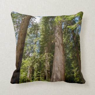 Western Red Cedar Trees Throw Pillow