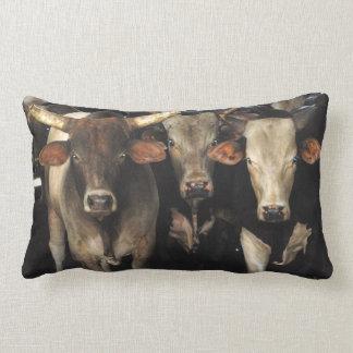 Western Rodeo Bull Cows Cowboy Southwest MoJo Pill Lumbar Pillow