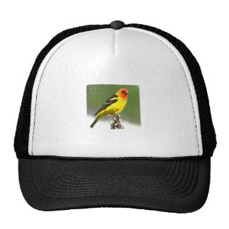 Western Tanager Art Logo Trucker Hat
