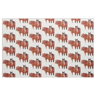 Western Themed Cowgirl Pattern Fabric