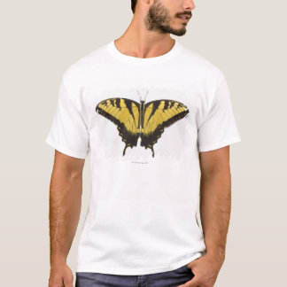 Western Tiger Swallowtail Butterfly T-Shirt