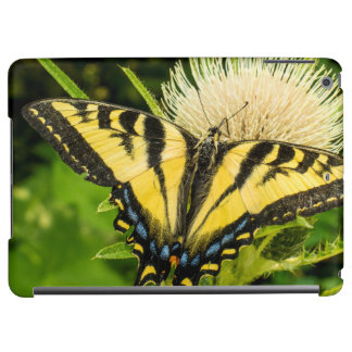 Western Tiger Swallowtail on a thistle iPad Air Cases