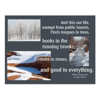 """Western Winter """"Sermons in Stones"""" Postcard"""