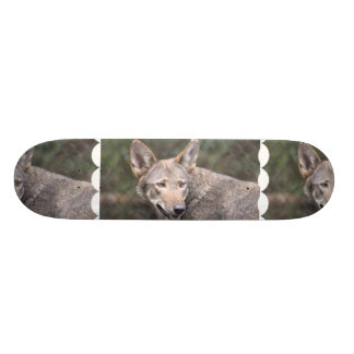 Western Wolf Skate Deck