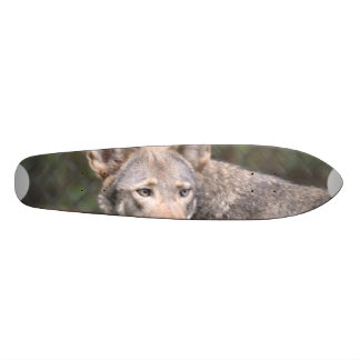Western Wolf Skateboard Deck