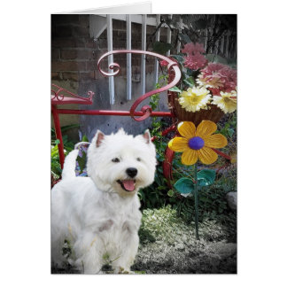 Westie All Occasion Note cards
