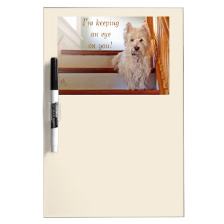 Westie Dog Sitting on the Stairs, Watching You! Dry Erase Board