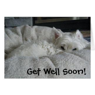 Westie Get Well Soon Photo Greeting Card