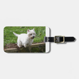 westie jumping.png luggage tag