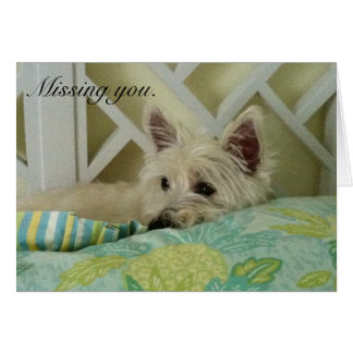 Westie Missing You Note Card