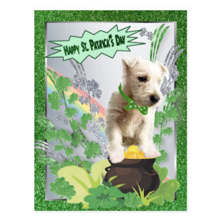 Westie Puppy Number Three Happy St Pattys Day Postcard