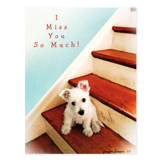 Westie Puppy On Step Missing You! #1 Postcard