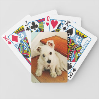 Westie Puppy On Step, Vintage Look Bicycle Playing Cards