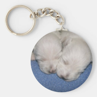 Westie Pups Sleeping Keychain