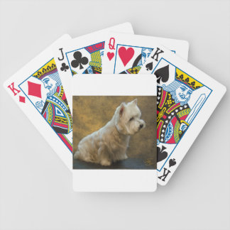 Westie sitting bicycle playing cards