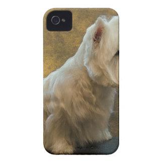 Westie sitting Case-Mate iPhone 4 cases