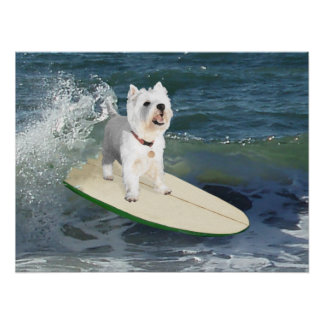 Westie Surfer Poster