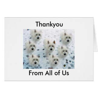 Westie Thankyou for Taking Good Care of Us Card
