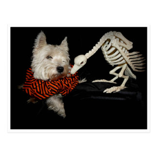Westie Vulture Skeleton Halloween Postcard