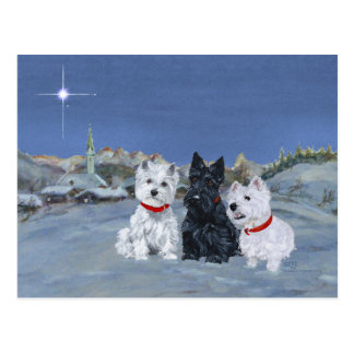 Westies and a Scottie Christmas Postcard
