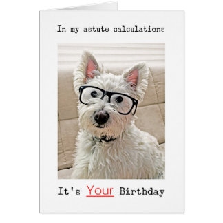 Westie's Calculations, It's Your Birthday Card