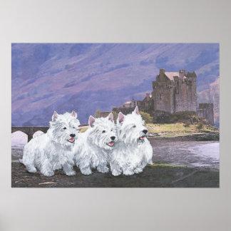 Westies in Scotland Poster