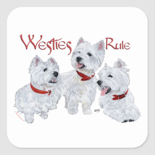 Westies Rule! Square Stickers
