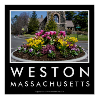 Weston Town Center Flowers Poster Perfect Poster