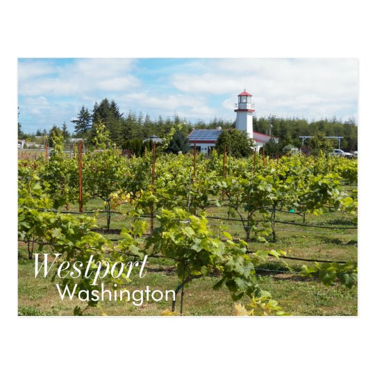 Westport, Washington Travel Photo Postcard