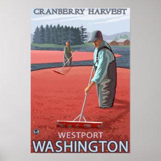 Westport, WashingtonCranberry Bog Harvest Poster