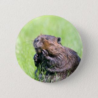 Wet Beaver 2 Inch Round Button