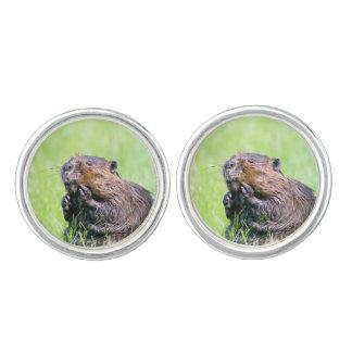 Wet Beaver Cufflinks