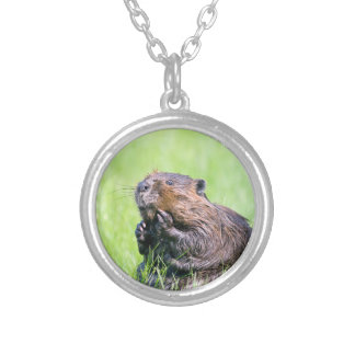 Wet Beaver Silver Plated Necklace