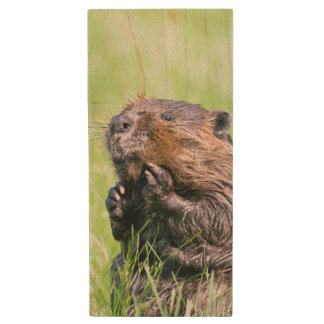 Wet Beaver Wood USB 3.0 Flash Drive