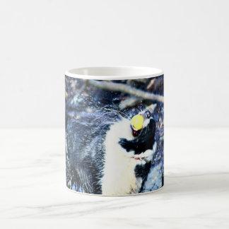 Wet dog coffee mug