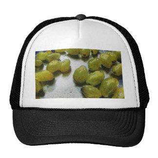 Wet glistening grapes trucker hat