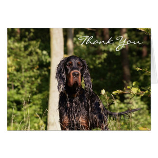 Wet Gordon Setter Thank You Note Card
