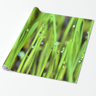 Wet Grass With Raindrops wrapping paper